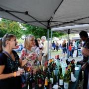rockfield_manor_wine_festival-1