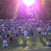 rockfield_manor_wine_festival-3