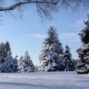 rockfield_manor_christmas-2-1